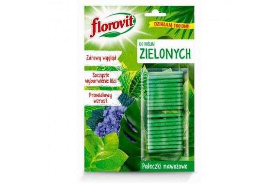 FLOROVIT Pałeczki nawozowe do roślin zielonych Silny Wzrost 20 szt.