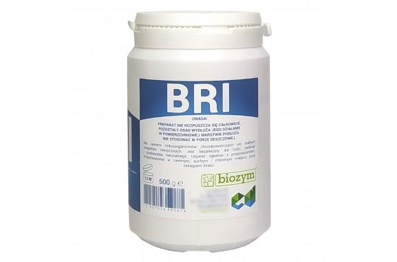 Biozym BRI Regenerator Iglaków Do drzew Iglastych 500 g